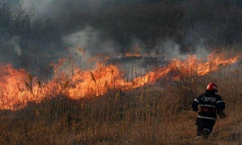 Pompierii au încercat 10 ore să stingă şapte incendii de vegetaţie