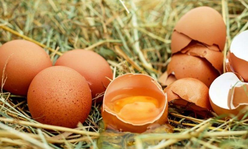 ALERTĂ: Ouă contaminate cu PESTICIDE, descoperite și în România