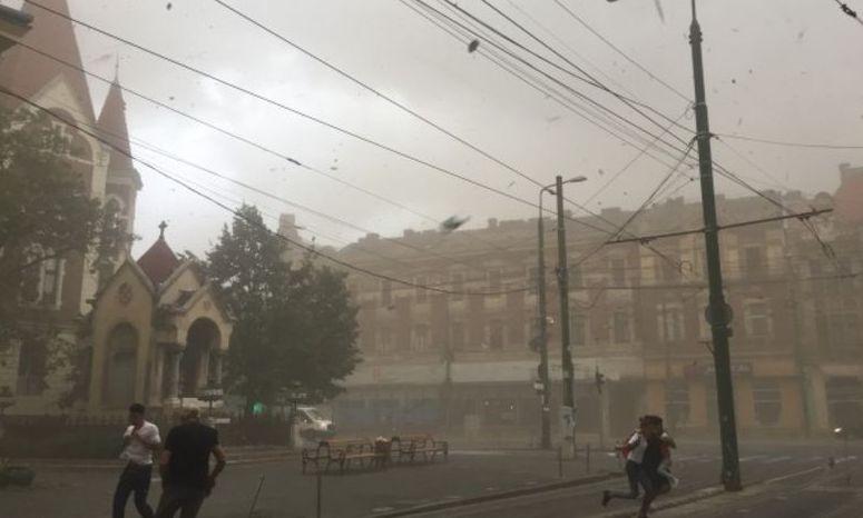 ANM, despre furtuna din TIMIȘ: Toate autoritățile statului au fost AVERTIZATE la timp
