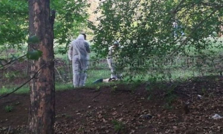 ADOLESCENT de 17 ani, reţinut în cazul unei crime odioase dintr-o pădure din Botoşani