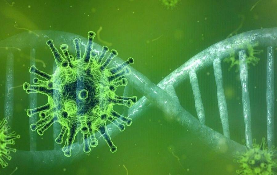 Un nou studiu despre COVID-19. Legătura cu înțepătura de țânțar
