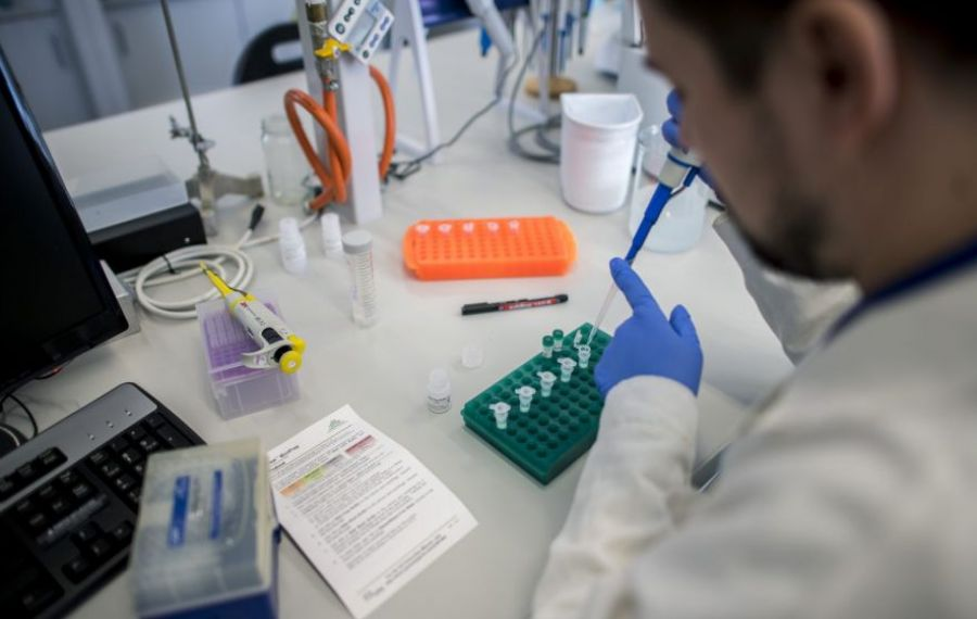 Vecinii maghiari dezvoltă un MEDICAMENT care inhibă capacitatea de infectare a COVID-19