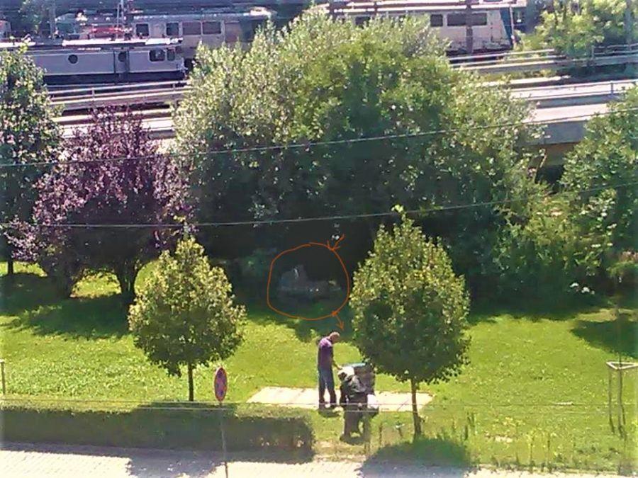 """Primăria Sector 1 știe? O """"comunitate ascunsă"""" ia naștere la Podul Grant"""