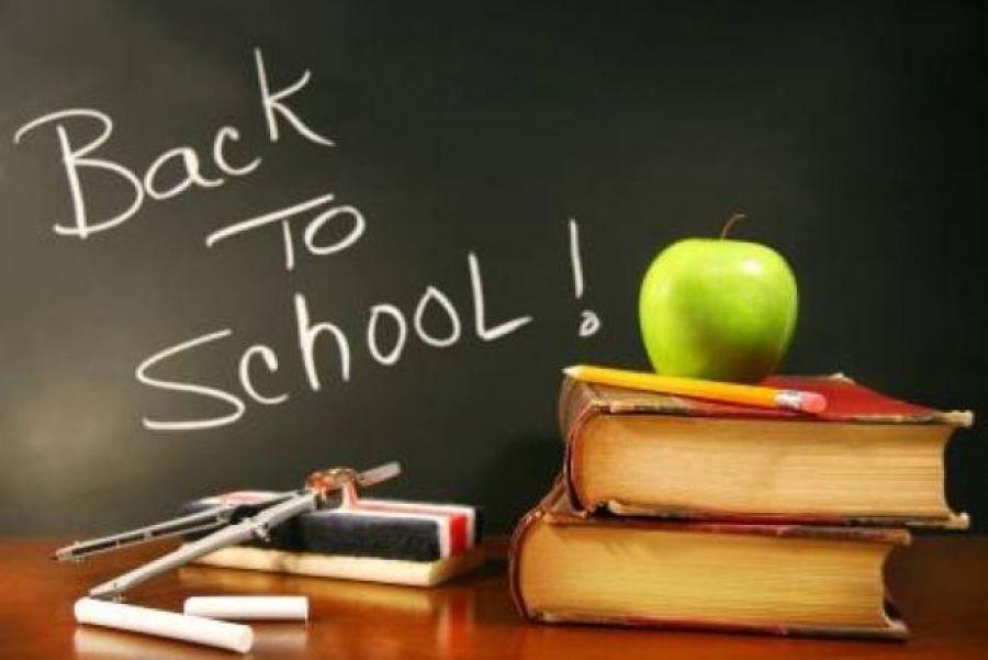 Cum s-ar putea deschide școlile? Ore mai scurte, distanțare, clase aerisite și triaj