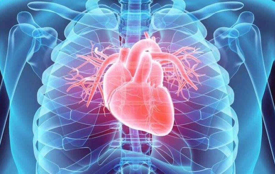 Inima, grav AFECTATĂ după vindecarea de COVID. Care sunt problemele