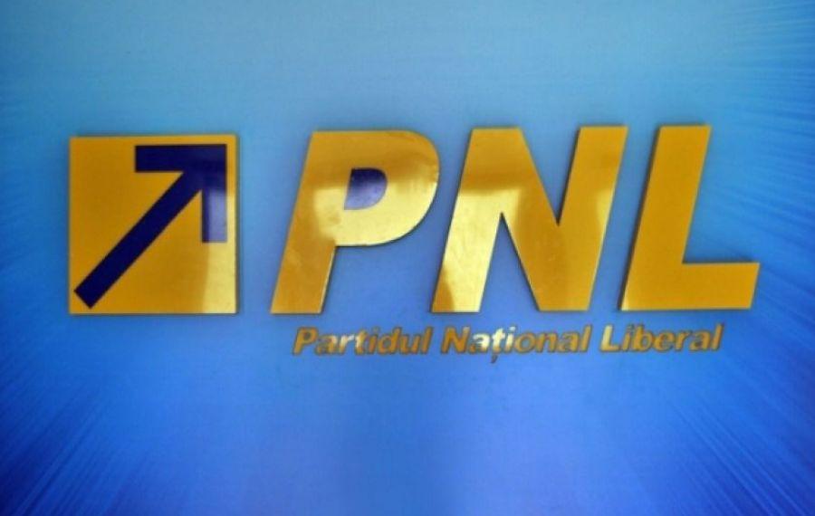 PNL a definitivat lista pentru alegerile parlamentare. Cine candidează