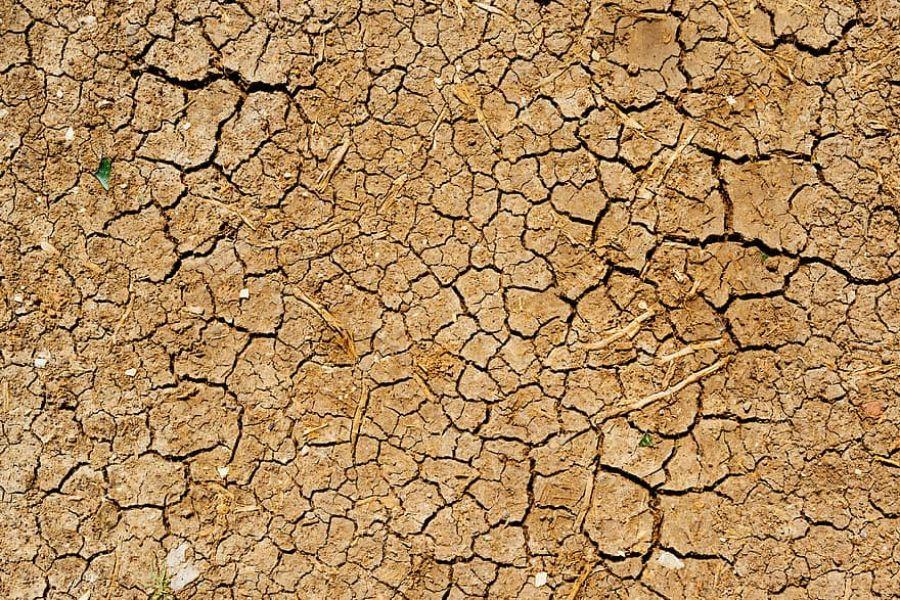 Toamna 2020 a fost a treia cea mai caldă din ultimii 60 de ani