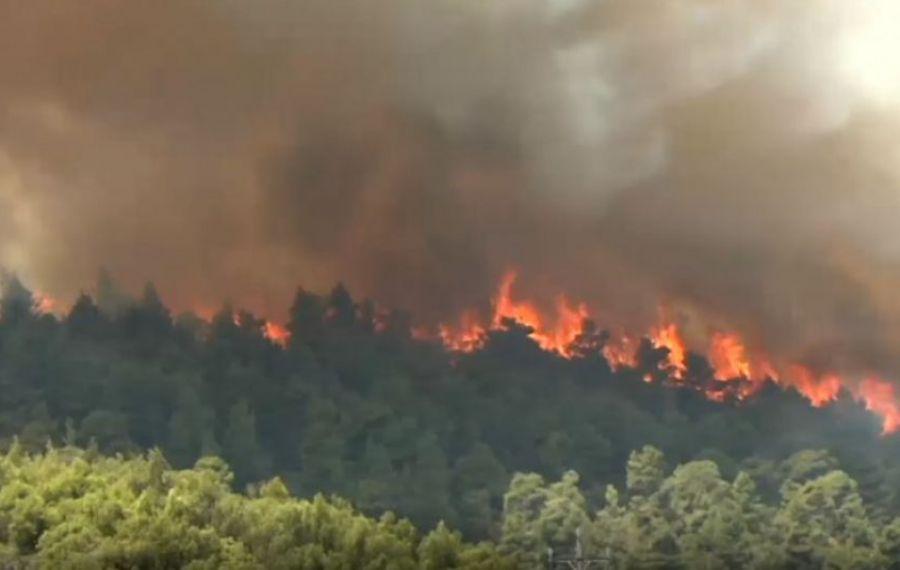 Situație DRAMATICĂ în Grecia: incendiu puternic în zona Attica. Pompierii români se luptă cu flăcările
