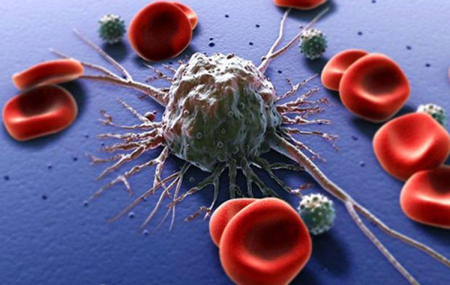 Studiu revoluționar: Un simplu test de sânge ar putea diagnostica peste 50 de tipuri de cancer