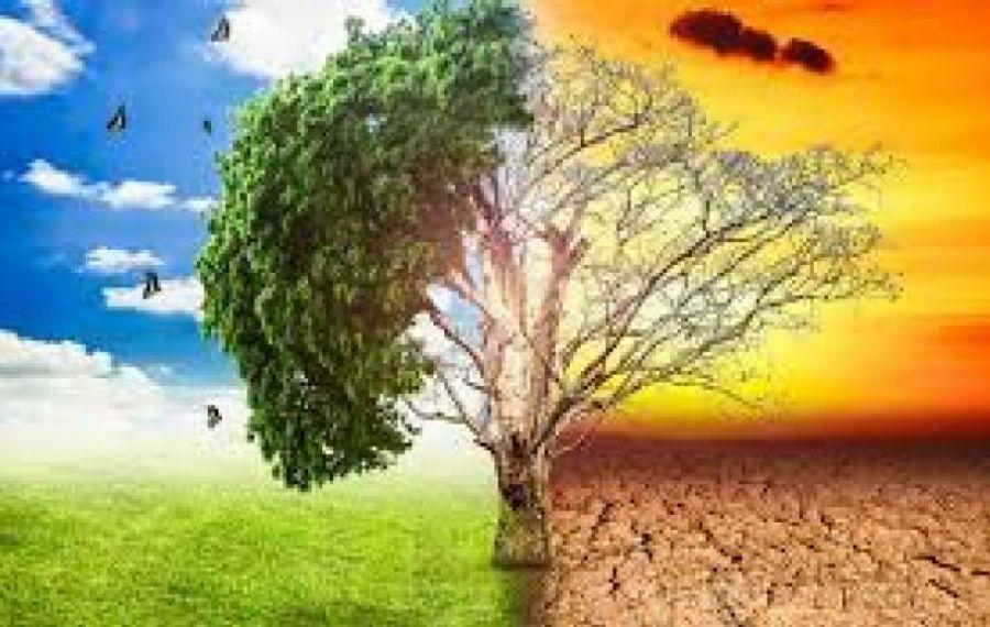 Studiu: 85% din populația lumii, afectată de SCHIMBĂRILE climatice