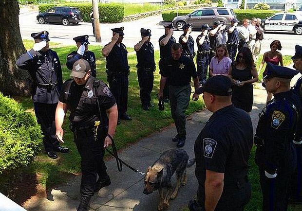 Despărţire emoţionantă: câinele poliţist Kaiser, condus la eutanasiere de toţi colegii săi în uniformă. VEZI FOTO!