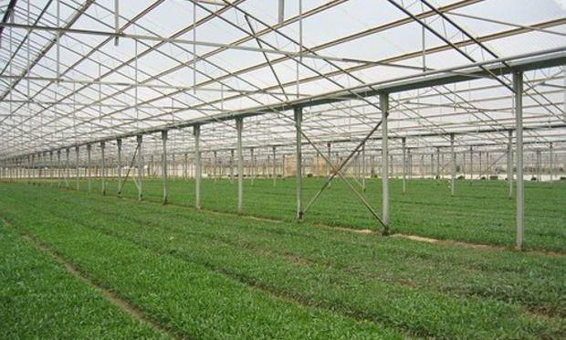 Noul impozit de 1,5%, impus și pentru grajduri şi sere